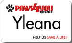 Paws 4 You Aluminum Name Tag